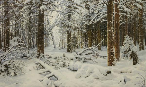 Владимир Александров. Зима