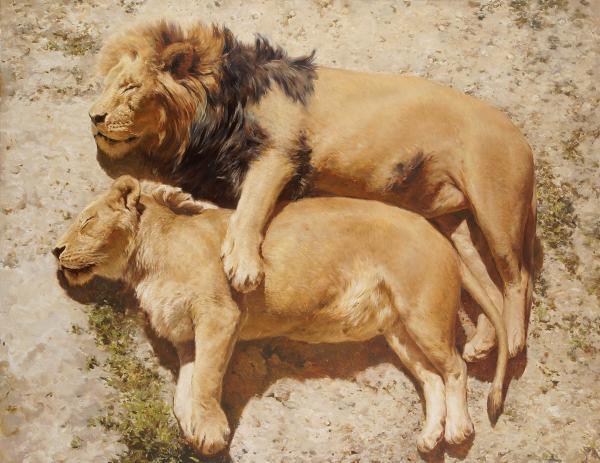 Владимир Александров. Спящие львы